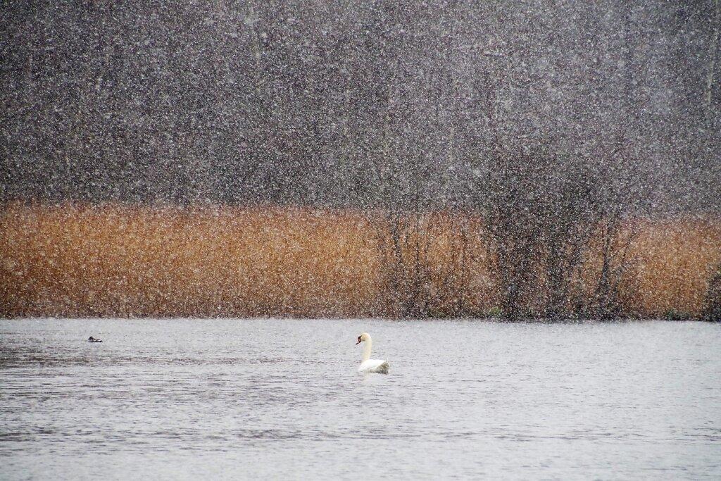 Luik lumesajus